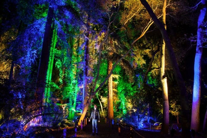 Enchanted Forest exhibit at Decanso Gardens