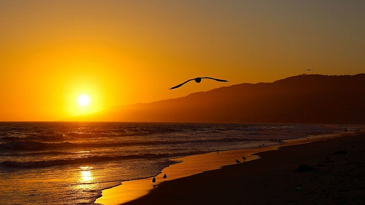 Zuma Beach at sunset