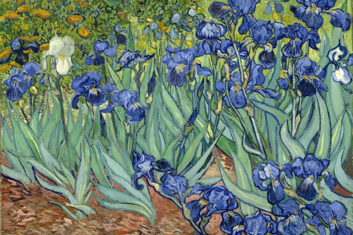 "Vincent van Gogh - ""Irises"" (1889) at Getty Center"